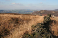 Harridge Pike photo