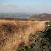 Harridge Pike