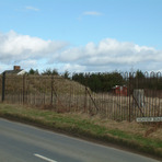 Ruardean Hill