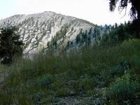 Griffith Peak photo