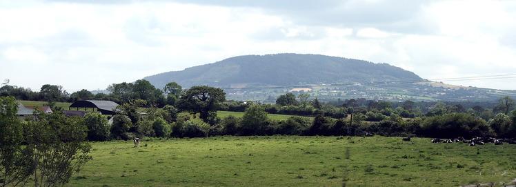 Tara Hill, County Wexford