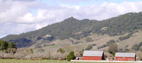 Taylor Mountain (Sonoma County, California) photo