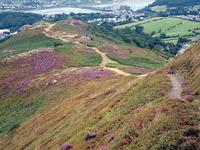 Mynydd y Dref photo