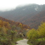 Road to the forest ..., Trem - Suva planina