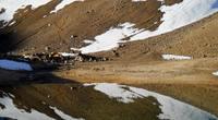 Camp  a 3100 mts, Volcan Domuyo photo
