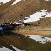 Camp  a 3100 mts, Volcan Domuyo