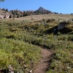 Trail to the saddle, Hyndman Peak