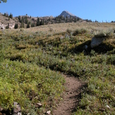 Trail to the saddle, Hyndman Peak