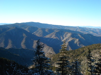 Hike down from the lodge via Alum, Mount LeConte photo